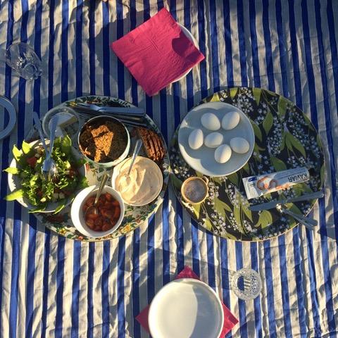 sweden picnic